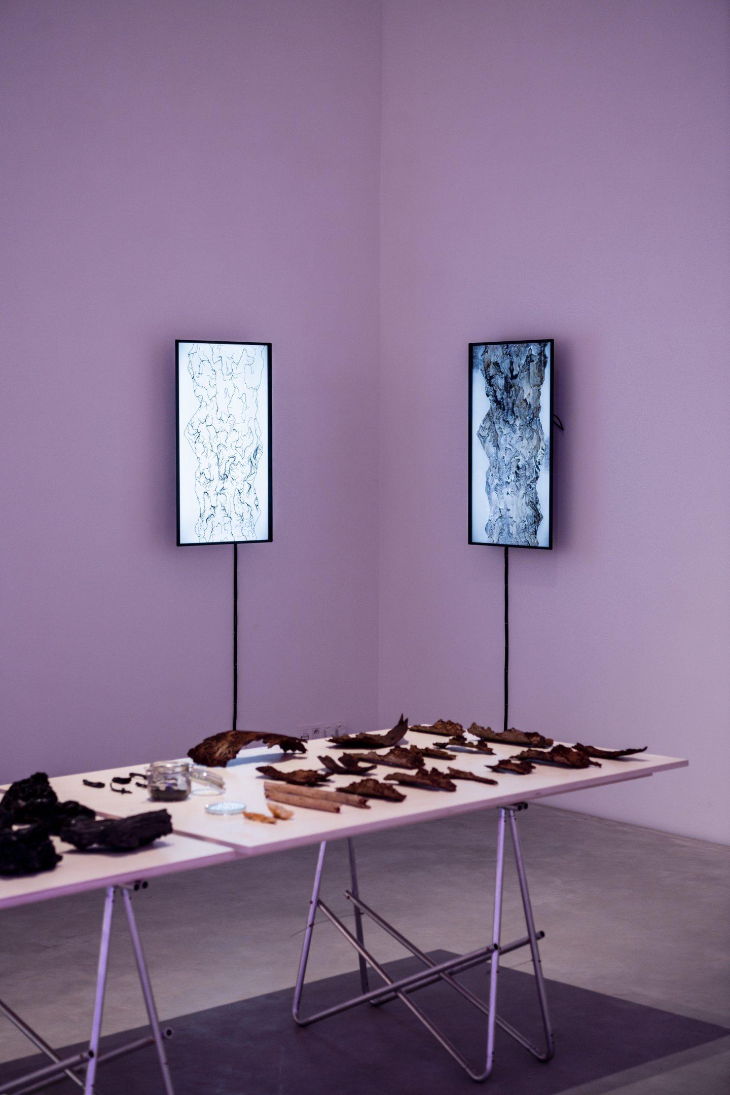 Kristof Vrancken, installationview (Hunger of the Pine)2, 2021, Z33, Hasselt. Foto Boumediene Belbachir